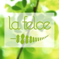 Logo-La-Felce